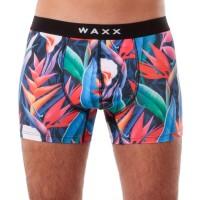WAXX MEN BOXER AMAZONE