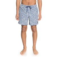 DC ALL SEASON 17'' BOARDSHORTS SODALITE BLUE
