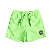 QUIKSILVER EVERYDAY VOLLEY YOUTH BOARDSHORTS GREEN GECKO