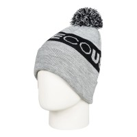 DC CHESTER BEANIE FROST GRAY